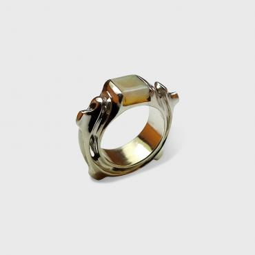 Ring Tortue