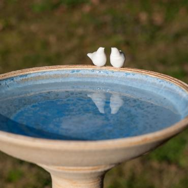Garden Collection: Birds drinking trough