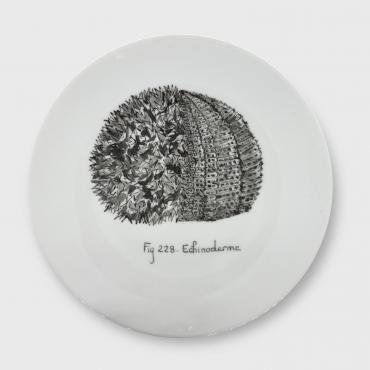 Assiette murale/Wall plate OURSIN