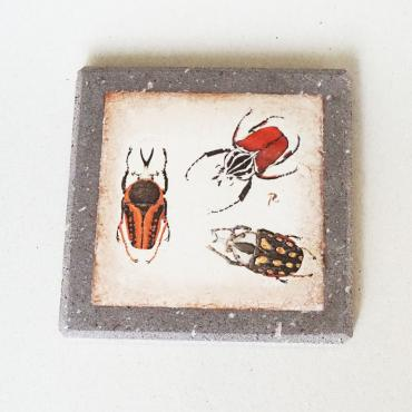 Cosaters insects in enamelled lava