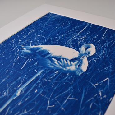 Cyanotype Flamant rose #4 (n°1/30)