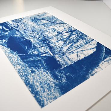 Cyanotype Forêt de Huelgoat #2 (n°1/30)