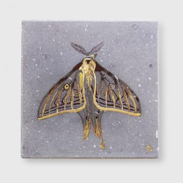 Tableau papillon transparent et d'or