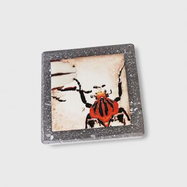 Coaster big insects in enamelled lava