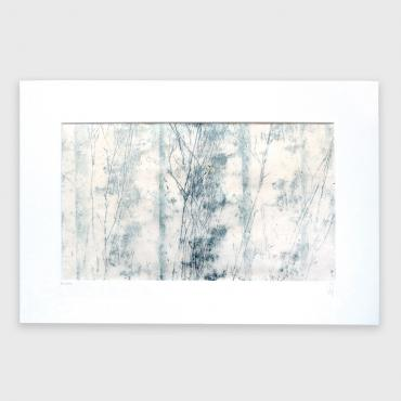 Monotype - Forêt