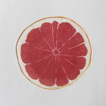 Engraving Grapefruit