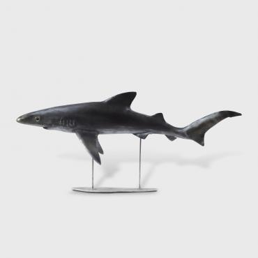 Sculpture Shark Blue Skin