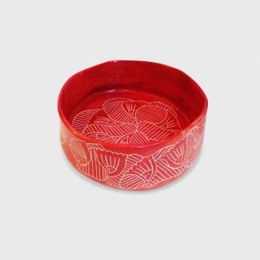 Salad bowl red