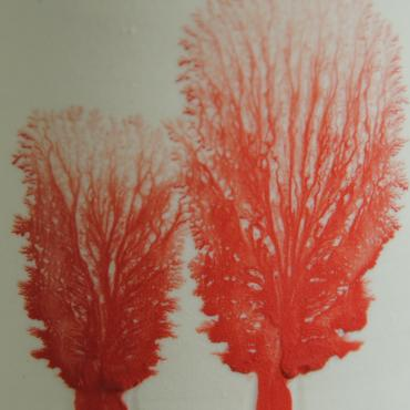 Vase Arbres red small